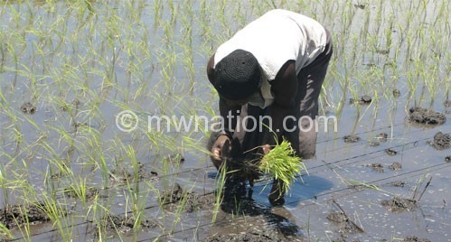 Oxfam cautions on mega agro-projects