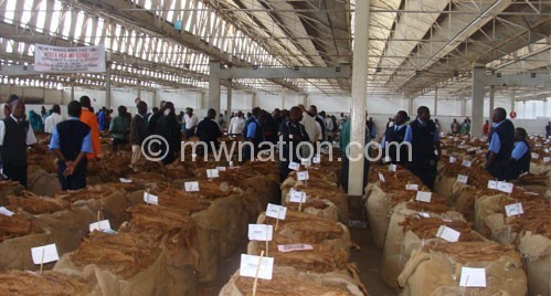 Tobacco: Malawi's predominant export