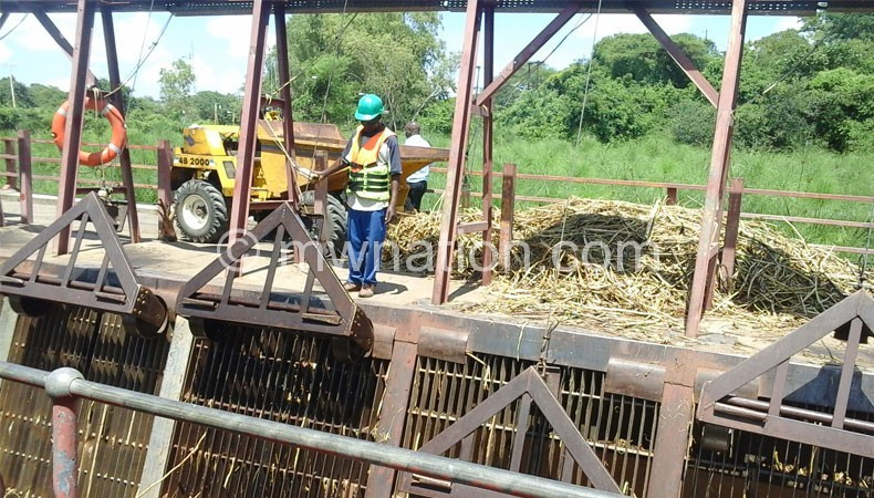 Escom official clearing weeds at Nkula