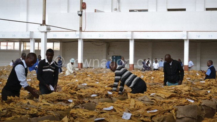 Flue-cured tobacco sales suspended in Lilongwe