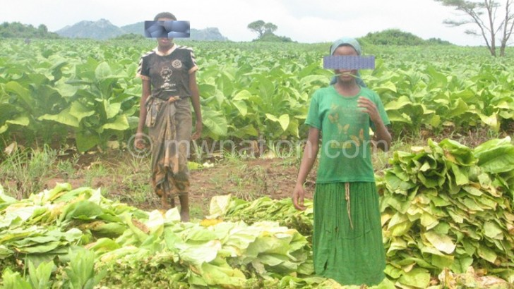 Lilongwe in fight against child labour