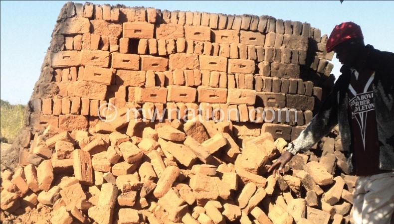 Burnt bricks increase environmental degradation