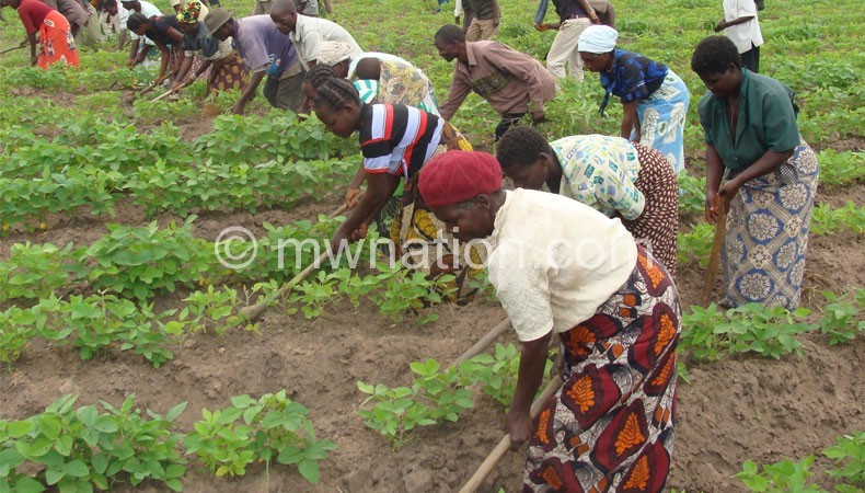 Women-groundnut-farmers