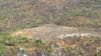NRWB in fight against deforestation