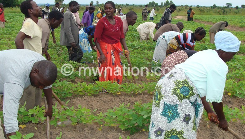 Malawi farmers need to adopt smart agriculture in the face of climate change