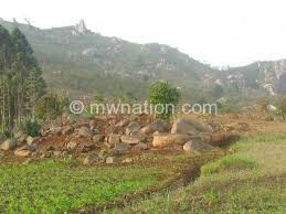 Court orders illegal settlers move out of Soche Hill