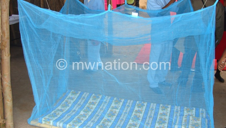 Mosquito net | The Nation Online