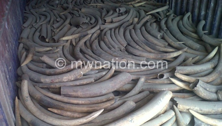 Some of the seized ivory to be burnt