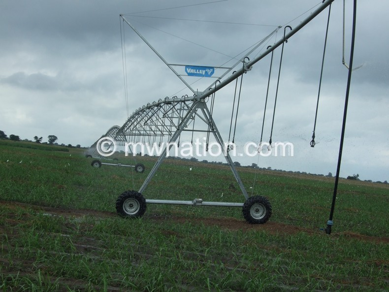 Irrigation equipment at Illovo Sugar's Nchalo Estate: Government has engaged the company to grow maize