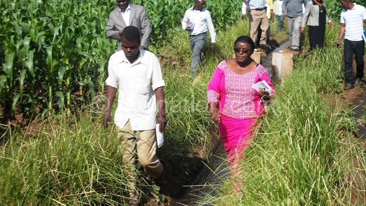 Zomba farmers challenged on irrigation farming