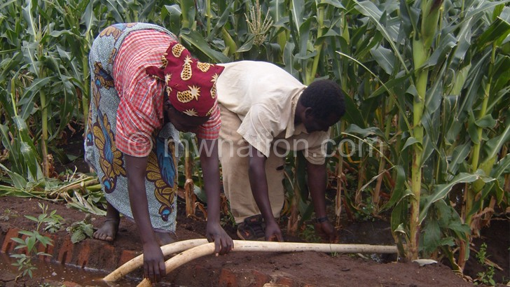 Malawi lags in agricultural production in Sadc—FUM