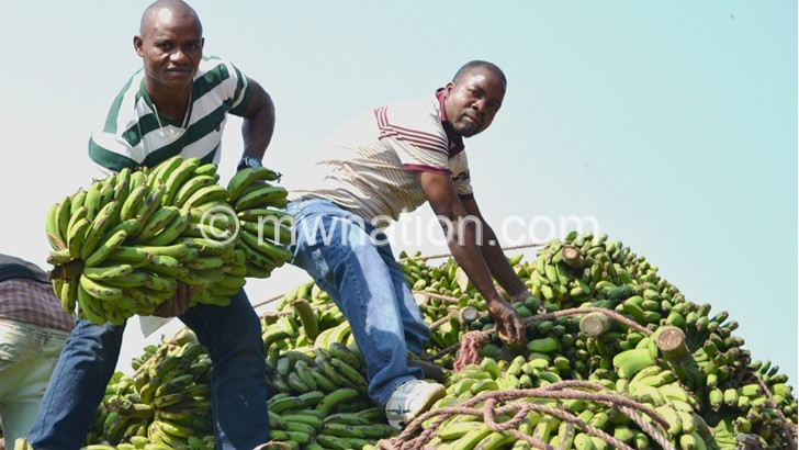 Tanzanian supplier Muhamad (L) offloading bananas helped by his agent