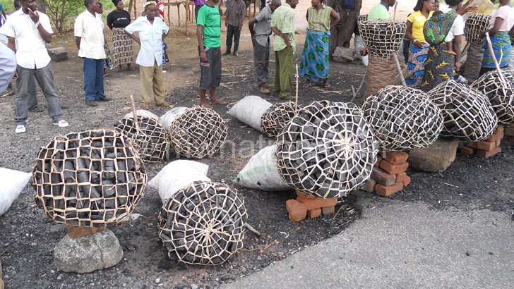 Machinga court convicts charcoal sellers