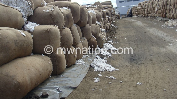 Much of the country's cotton is exported in raw form