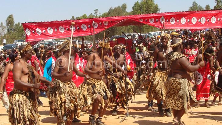 Gomani Ngonis and their odd terms