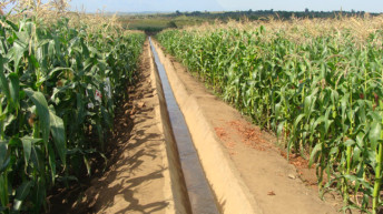 Farmers reap benefits from farming project