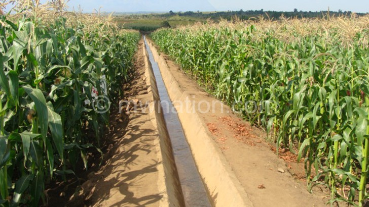 irrigation farming | The Nation Online