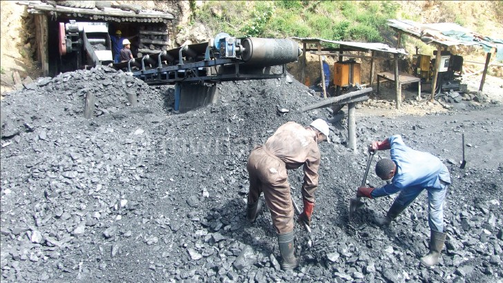 Govt courts Vale on coal for Neno power plant