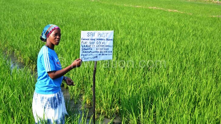 EDF targets 120 000  tonnes rice export in 2018