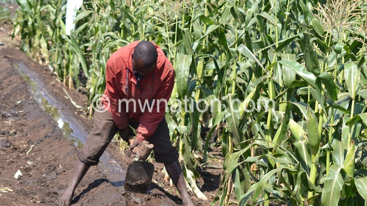 NEPAD wants smallhorder farmers like him to be supported