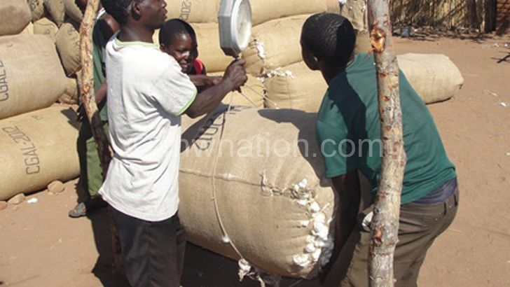 Poor prices have affected cotton production in Malawi