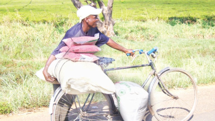 Cases of theft of subsidised fertiliser have become common