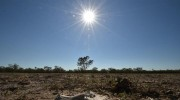 COP 22: What's in it for Malawi?