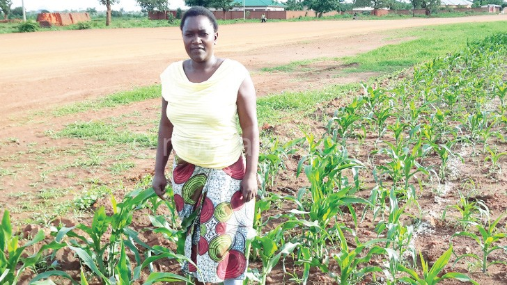 Alice Chunda stands in her maize garden where Central Region Water Board officials were barred from digging a trench until compensation issues are resolved