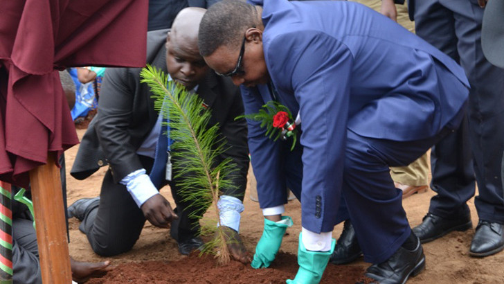 Mutharika pleads for environment protection