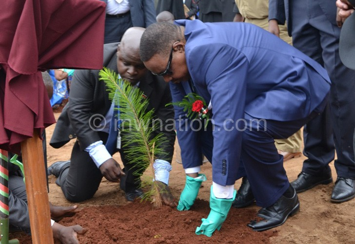 Mutharika planting a tree at the launch of the exercise