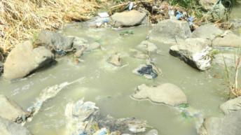 Cries of city residents over river pollution