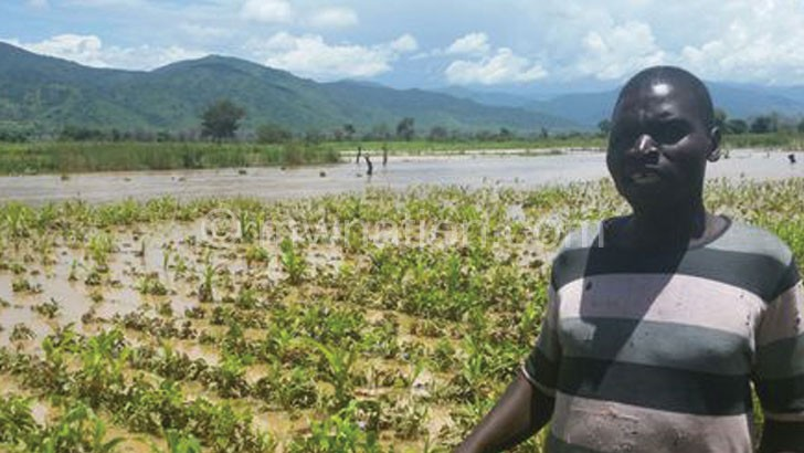 A farmer stands in a flooded irrigation scheme at  Thumbi in Mzimba North