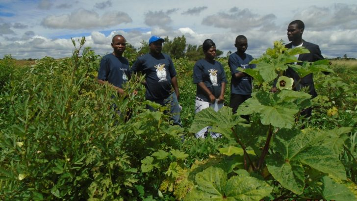University students shining in permaculture