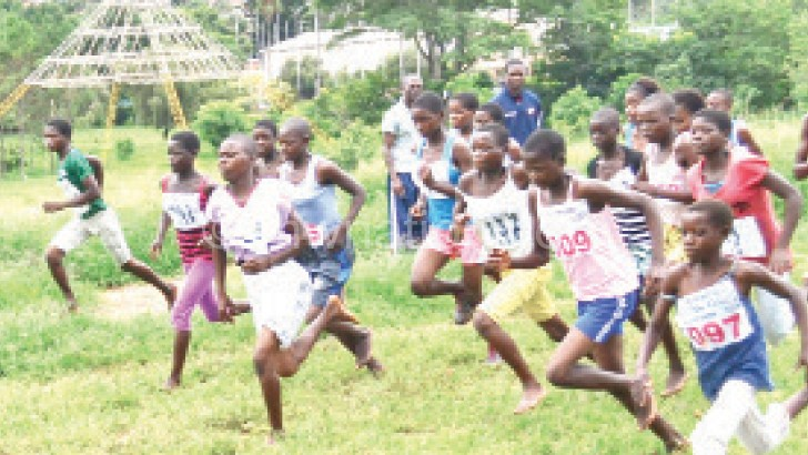 Malawian athletes have never qualified for the Olympic Games