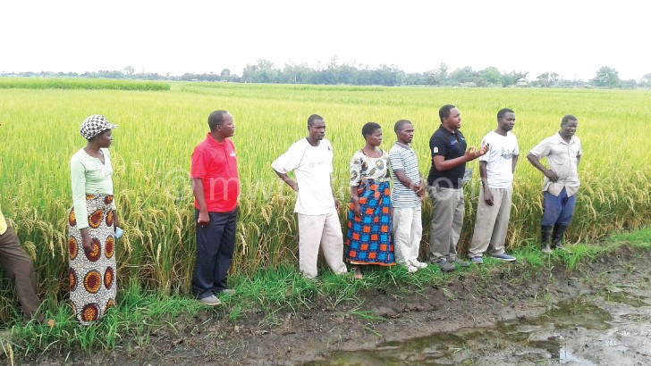 Zee Chunga of Story Workshop (in black golf shirt) explaining to rice farmers the miracle of new technologies in agriculture