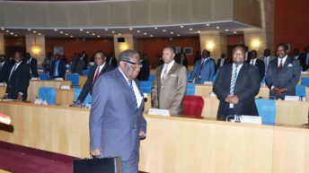 Firm tips government on Mid-Year Budget Review