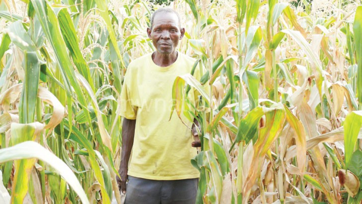 One of the beneficiaries in his farm