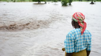 Pains of the elderly in times of disaster