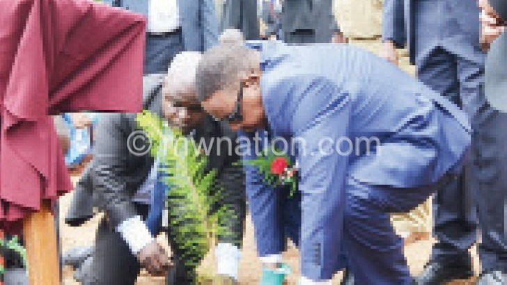 Mutharika launched tree planting  early this year