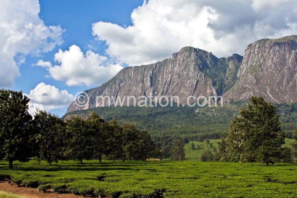 mulanje mountain   The Nation Online