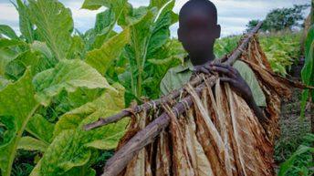 Raging battle against child labour