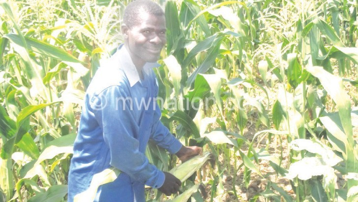 Flood victims embrace winter cropping