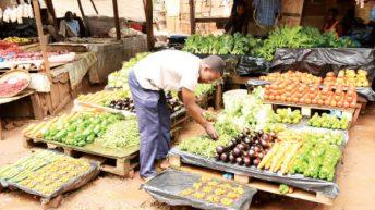 Do councils care about vendors' welfare?
