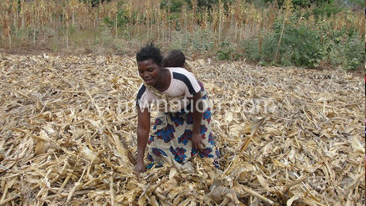 woman farmer | The Nation Online