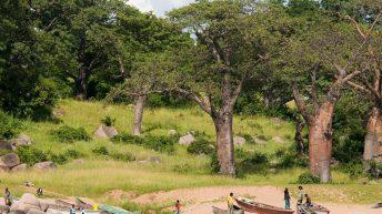Wonders of Likoma