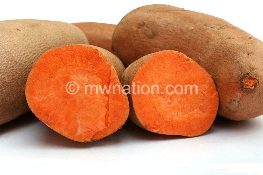 potato | The Nation Online