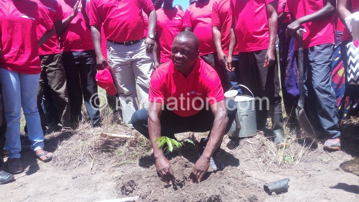 Puma, Blantyre Press Club plants trees
