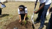 MHC for environment-friendly initiatives