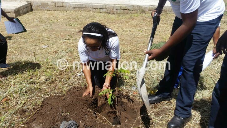 Napolo planting her tree | The Nation Online