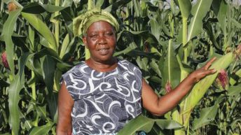 Agriculture transformation roadmap in Malawi